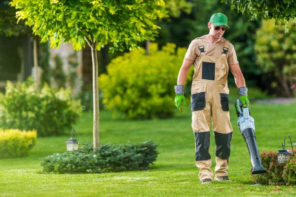 entretien espace vert particulier