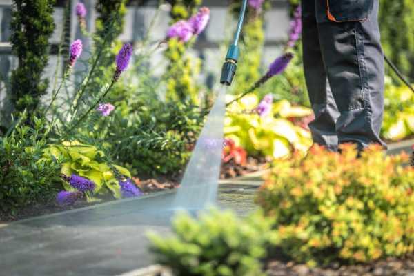 entretien jardin devis