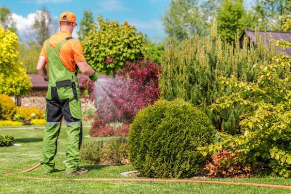 entretien jardin entreprise