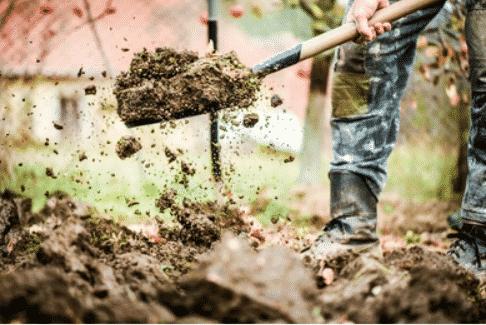 jardinier paysagiste professionnel